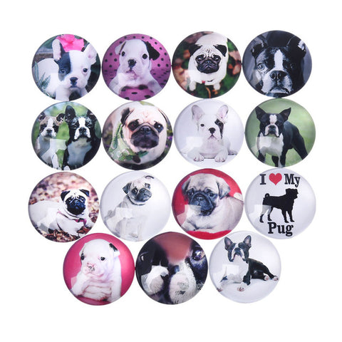 5Pcs Cute Dog Glass Dome Decorative Fridge Refrigerator Magnets