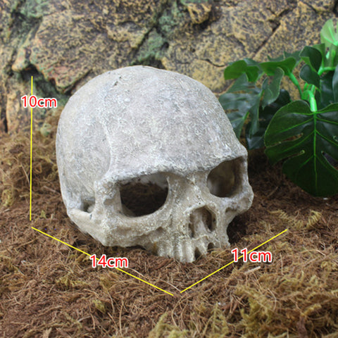 Skull & Dinosaur Ornaments Aquarium Fish Tank Decorations
