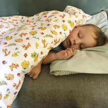 Load image into Gallery viewer, Down Toddler Duvet Blanket
