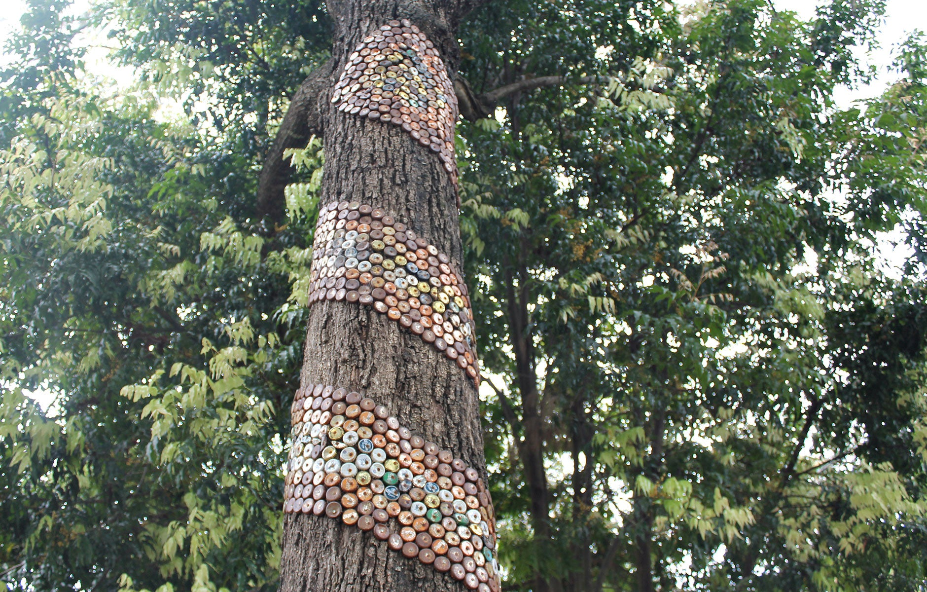 1000 Bottle Caps