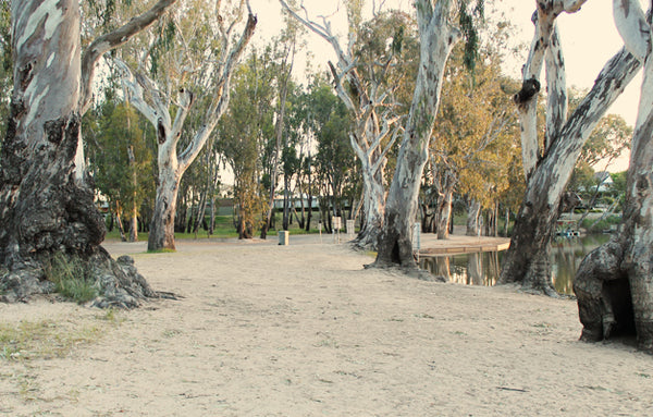 Edward River, Deniliquin