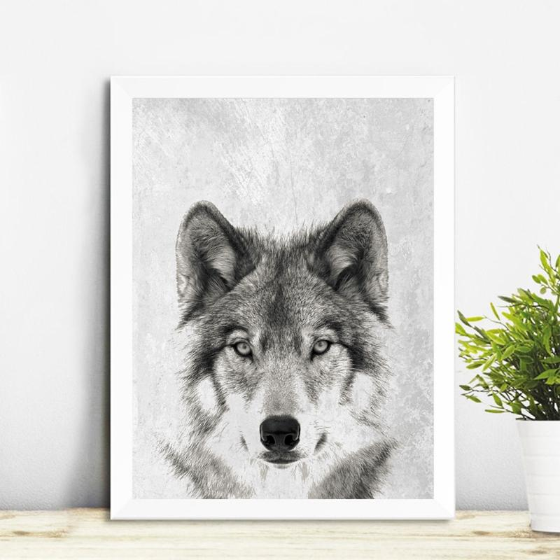Black And White Wolf Portrait