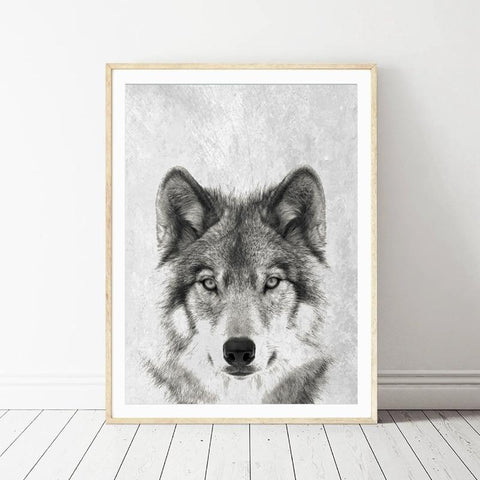 Image of Black And White Wolf Portrait