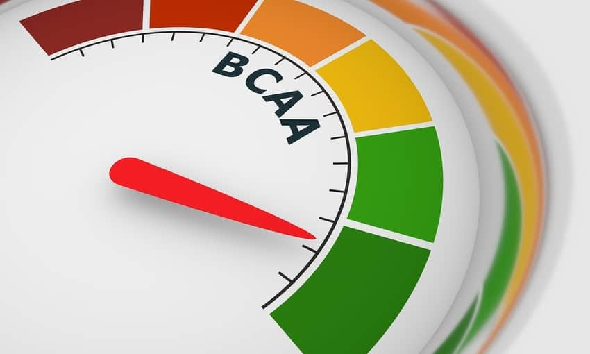 Should You Take Bcaa On Off Days Performance Lab