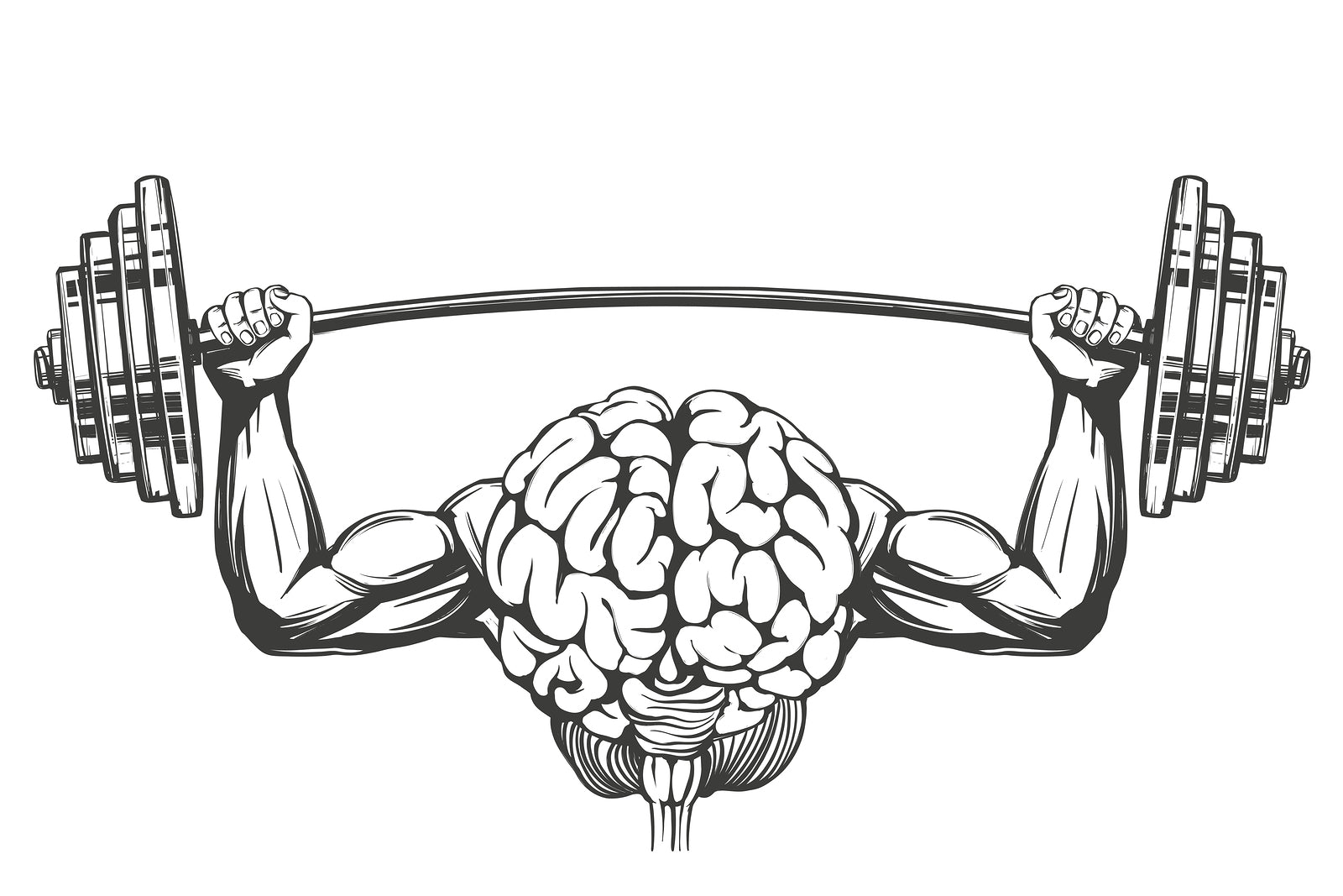A brain with muscular arms as an example of how the best nootropics can benefit bodybuilders