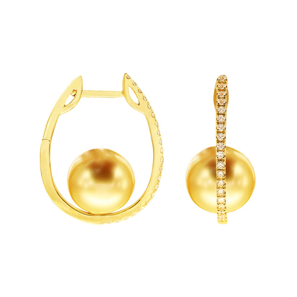 9mm-10mm Golden South Sea Pearl Hoops in 18K Yellow Gold