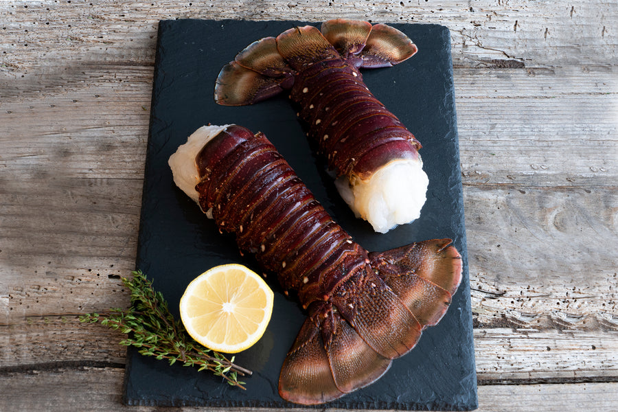 Jumbo 12 to 14 oz. Australian Lobster Tails