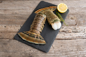 Large 8oz. Caribbean Lobster Tails