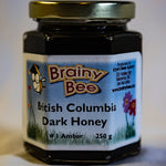 Brainy Bee - BC Dark Honey