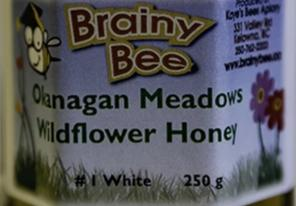 Brainy Bee - OK Meadows Wildflower