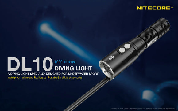 DL10 DIVE LIGHT