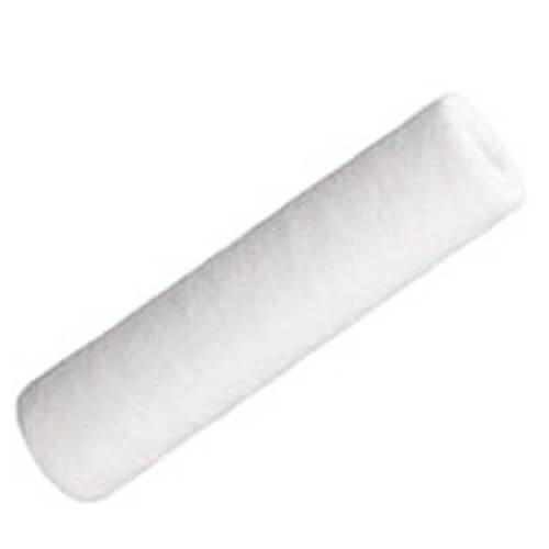 Ionic Systems 10 Inch Sediment Filter