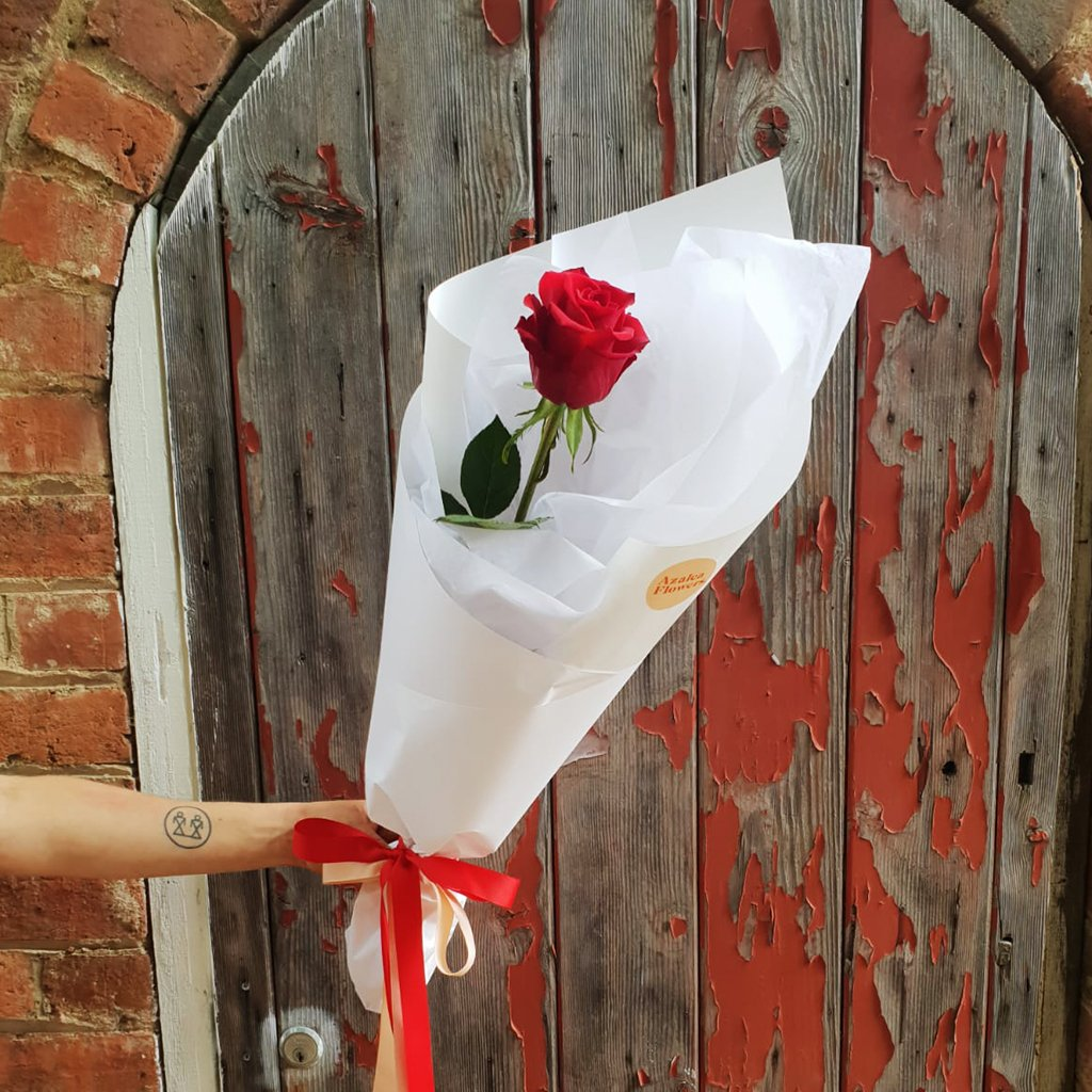 Send a single red rose