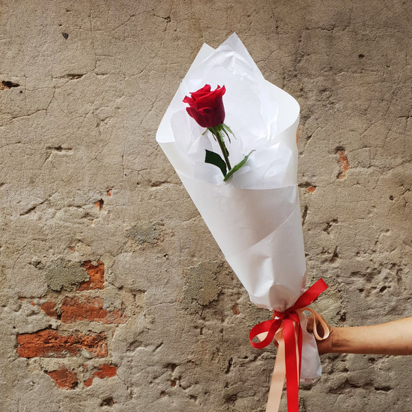 One Kiss - Single Long Stem Red Rose