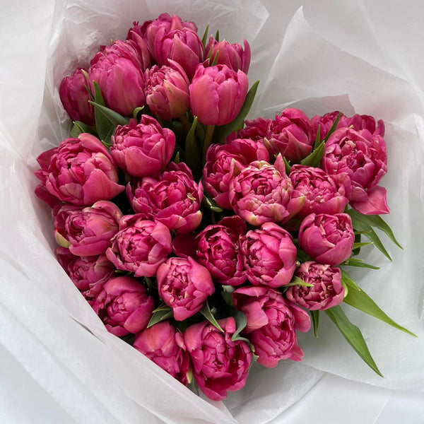 Order Double Tulips Gift Wrapped