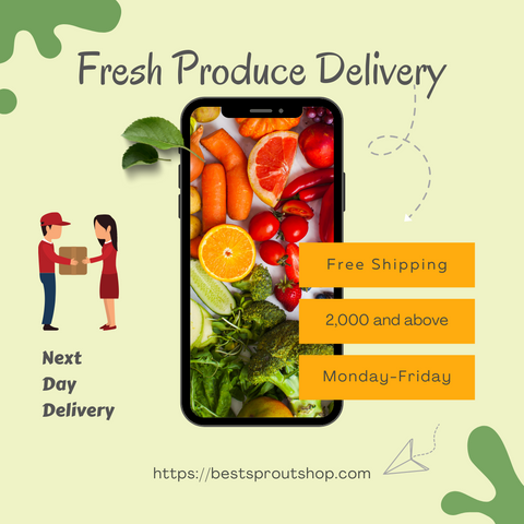 fresh produce delivery icon