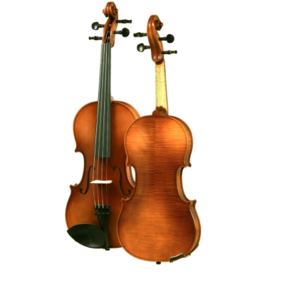 ARS Music Intermediate Violin Outfit - Strings, Bows & More