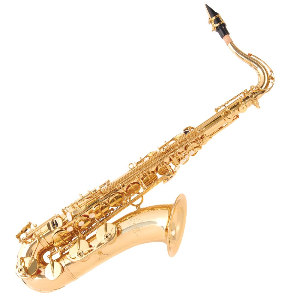 Odyssey Premiere Tenor Sax Outfit With Case