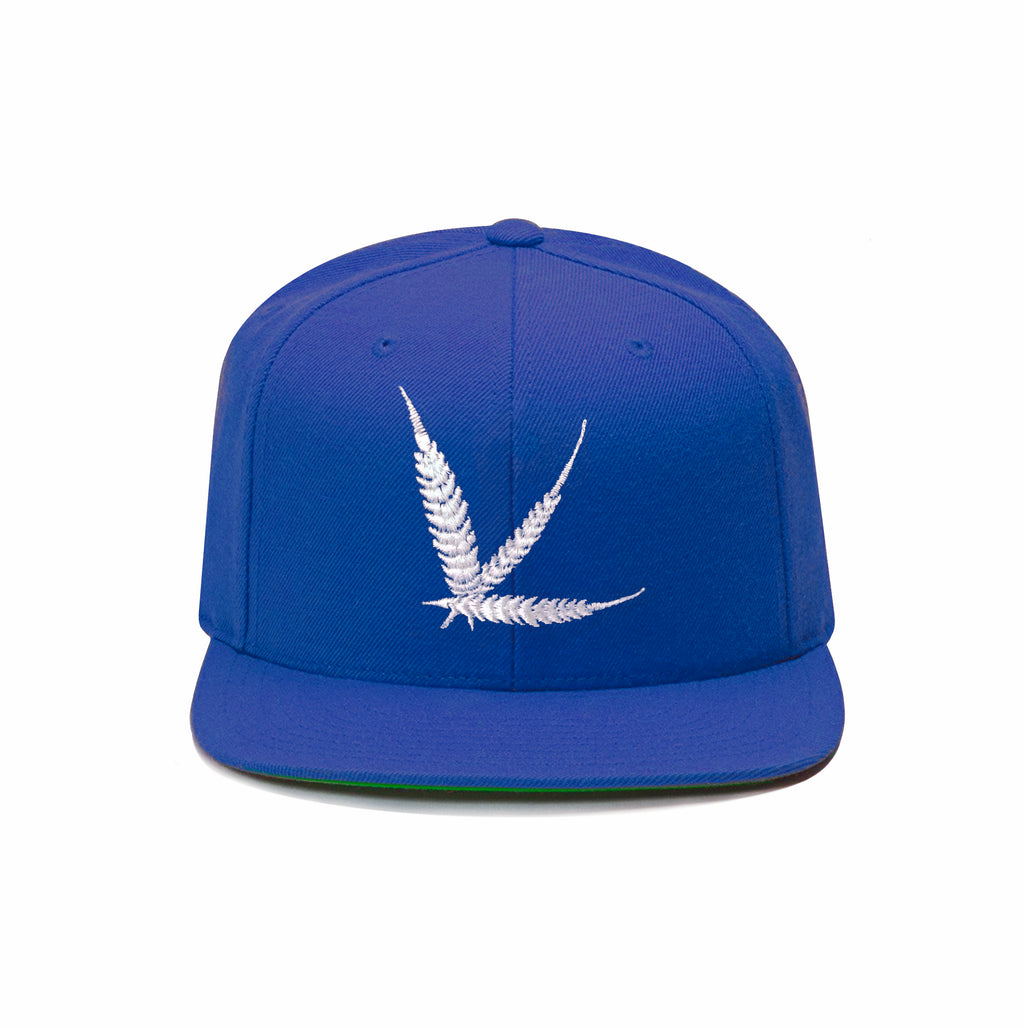 Blue Capo Snapback with Green Undervisor