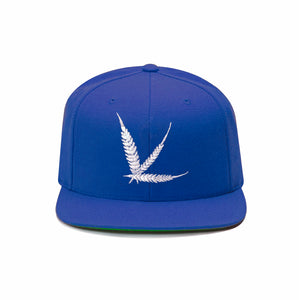 Cannabism Blue Snapback with Green Undervisor