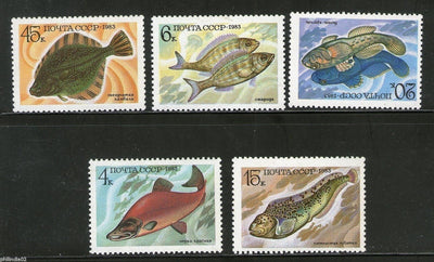 Russia - USSR 1983 Marine Life Mammals Animals Fauna Fish Sc 5164-68 MNH # 158 - Phil India Stamps