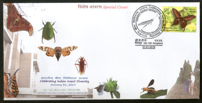 India 2019 Insect Diversity Butterfly Moth Agriculture Science Special Cover # 18577