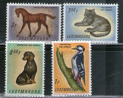 Luxembourg 1961 Birds Dog Cat Horse Animals Protection Fauna Sc 376-79 MNH #4027