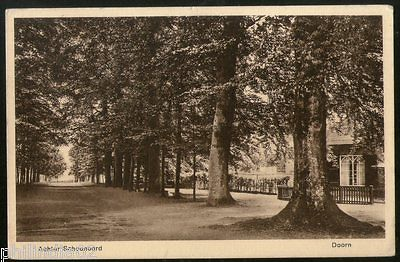 Netherlands 1930 Doorn Behind the shelter View Picture Post Card # 139
