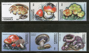 India Fiscal Sangli State 5Rs King Court Fee TYPE 3 KM 51 Revenue Stamp # 455