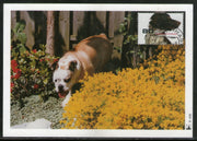 Netherlands 1999 Dog Pet Animal Sc 1012a Max Card # 6191
