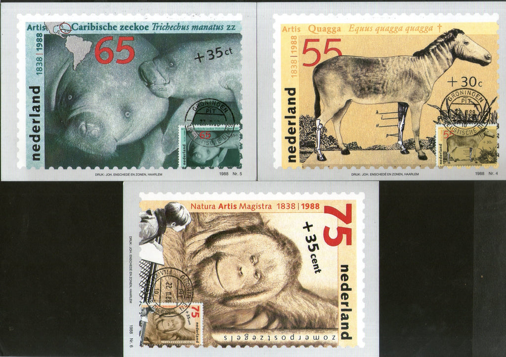 Netherlands 1988 Zoological Society Horse Marine life Chimpanzee Wildlife Animal Sc B638-0 Set of 3 Max Cards # 62 - Phil India Stamps