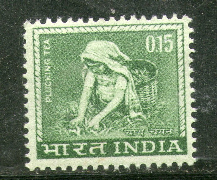 India 1966 15p Tea Plucking Agriculture 4th Def. Series WMK-Ashokan Phila-D77 MNH - Phil India Stamps