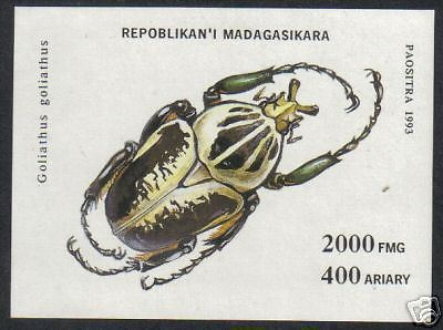 Malagasey 1993 Insects Beetles  7V+M/S Complete Set MNH # 5028