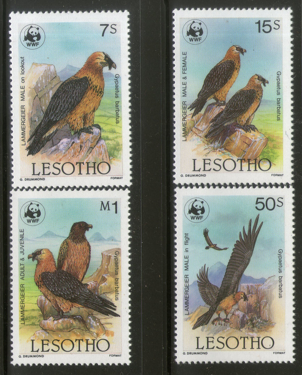 Lesotho 1986 WWF Bearded Vulture Bird of Prey Wildlife Fauna Sc 512-15 MNH # 034 - Phil India Stamps