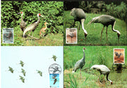 Korea 1988 WWF White-Naped Crane Bird Wildlife Animal Sc 1508 Set of 4 Max Cards # 63 - Phil India Stamps