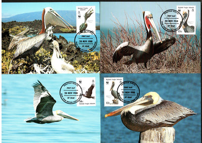Virgin Island 1988 WWF Brown Pelicans Bird Wildlife Animal Sc 621-4 Max Cards # 73 - Phil India Stamps