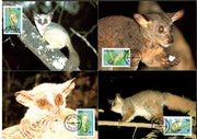 Tanzania 1989 WWF Bushbabies Wildlife Animals Sc 468-71 Set of 4 Max Cards # 76 - Phil India Stamps