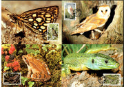 Jersey 1989 WWF Frog Owl izard Wildlife Animals Sc 507-10 Set of 4 Max Cards # 80 - Phil India Stamps