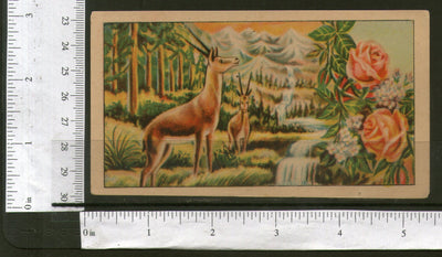 India Waterfall Deer Rose Vintage Trade Textile Label Multi-colour # 556-29 - Phil India Stamps