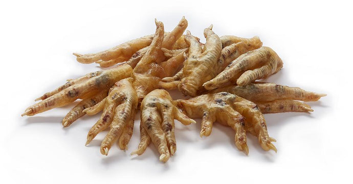 Can Dogs Eat Chicken Feet? Health Benefits and What to Avoid