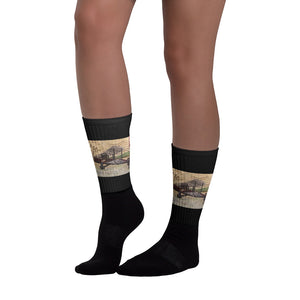 1918 Air Mail Socks