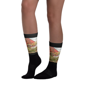 Crop Duster Socks