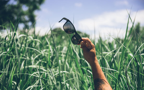 Distil Union Folly Sunglasses in a green field with blue skies