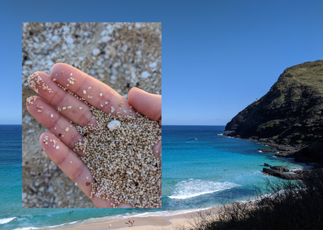 A photo of sand grains in a hand with a photo of a blue Hawaiian coastline. Photos by Lindsay Windham