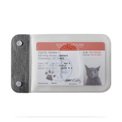 distil cardsleeves with a fake cat ID in translucent plastic sleeves on a white backdrop
