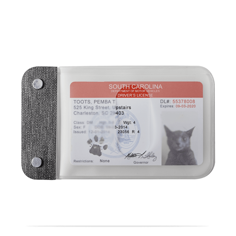 fake cat id inside distil semi transparent cardsleeves on a white backdrop