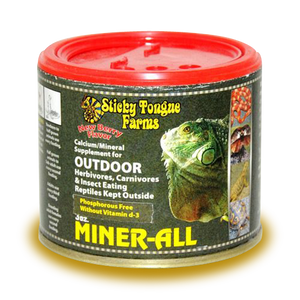 Miner All Outdoor Tortoise Formula