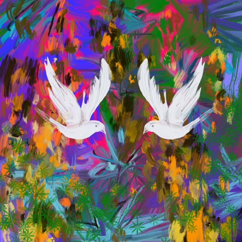 Two Doves christmas digital print, vibrant, original, John Lewis and Childrens' illustrator