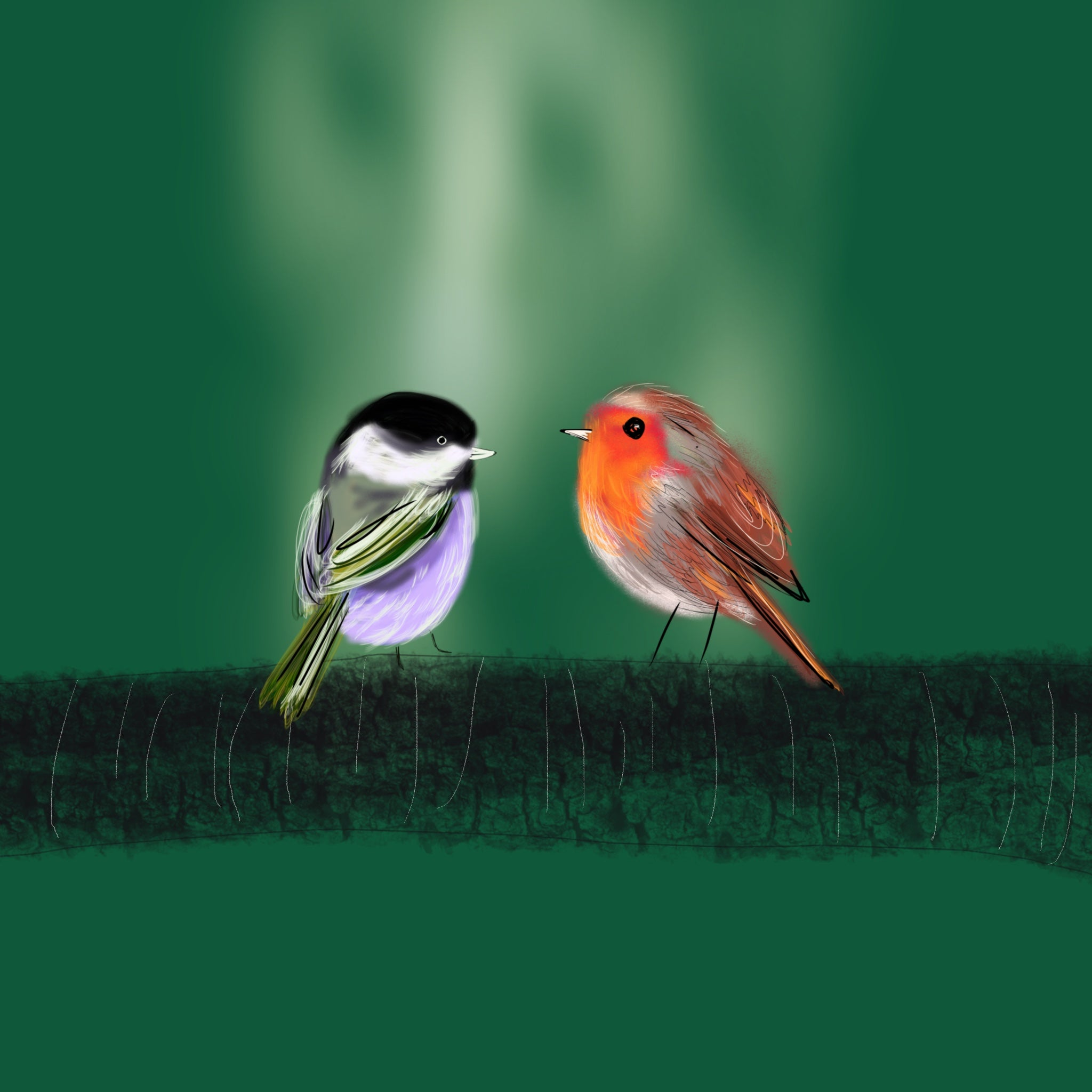 Two Birds christmas print, vibrant, original, John Lewis and Childrens' illustrator