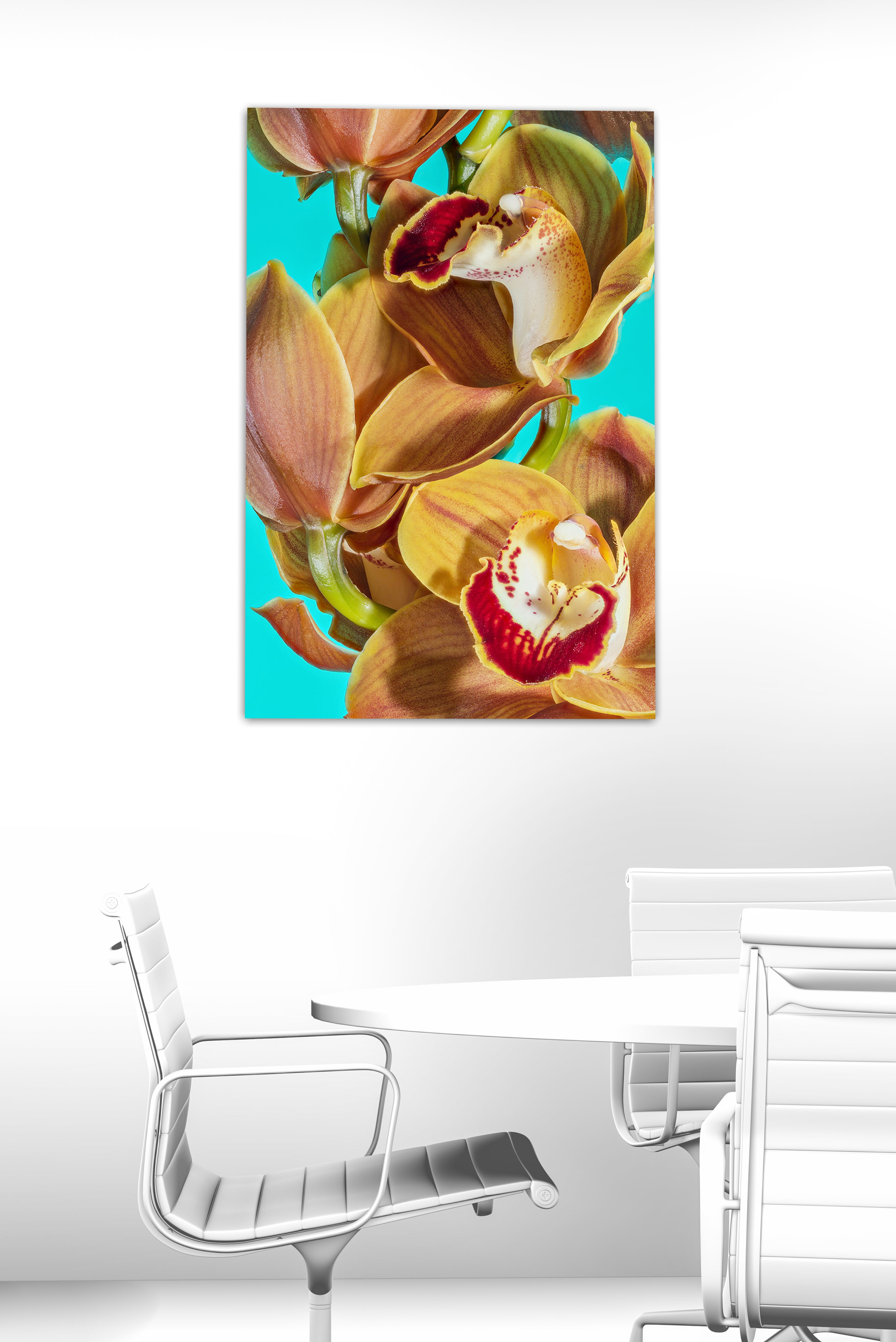 Orchid 01 spring limited edition, on aluminium personally signed, ready to hang 2019